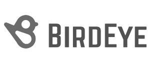 Birdeye Review