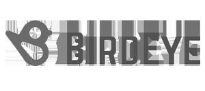 Birdeye Review